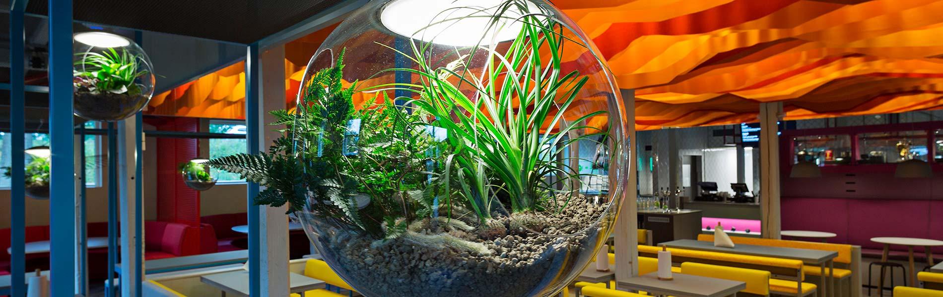 En del av restaurangen med en hängande glaskruka med växter i förgrunden