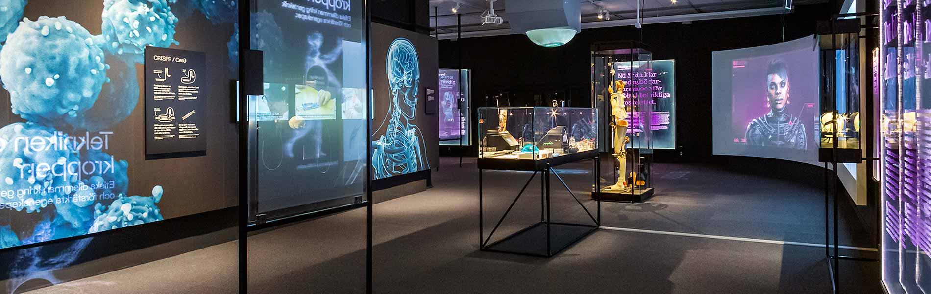Del av utställningen med skelett på väggarna